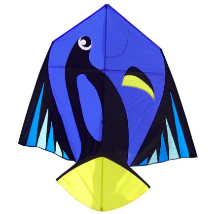 dory kite